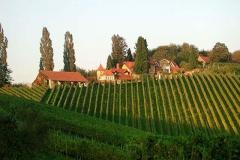 Amazin Winery, Jeruzalem, Slovenia